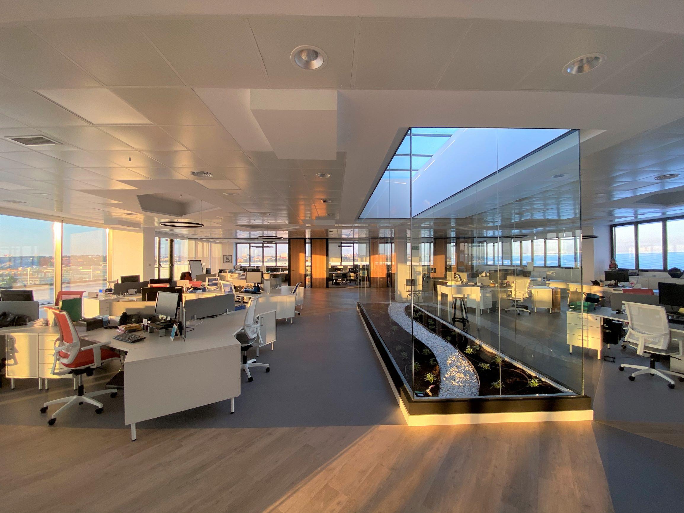 COVID 19: ¿Es seguro volver a la oficina?